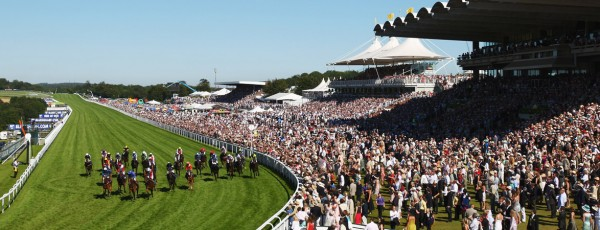 Introducing RFID Membership Cards at Goodwood Racecourse